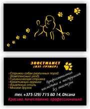 Услуги по стрижке собак